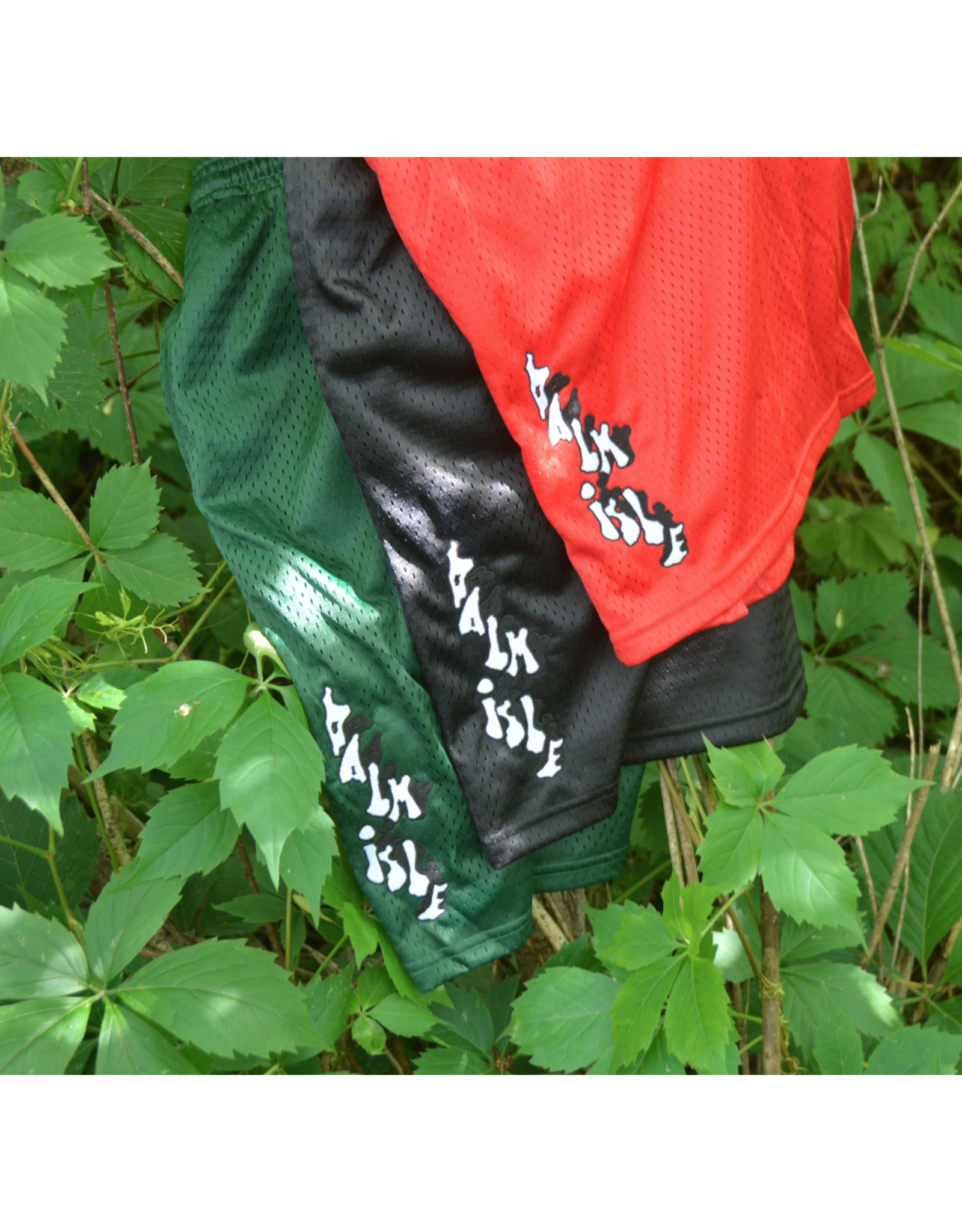 Palm Isle Baltimore Embroidered Short - Black