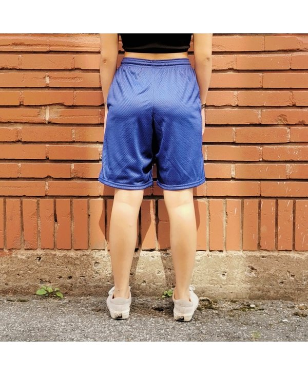 Baltimore Embroidered Mesh Shorts - Surf The Web