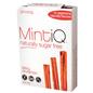 MintiQ MintiQ Spicy Cinnamon