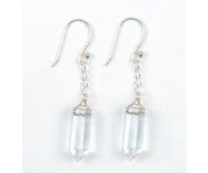 Allpa Crystal Swing Earrings