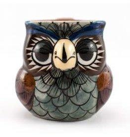 Lucia's Imports Wise Owl Mug