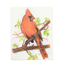 Mr. Ellie Pooh Cardinal Greeting Card