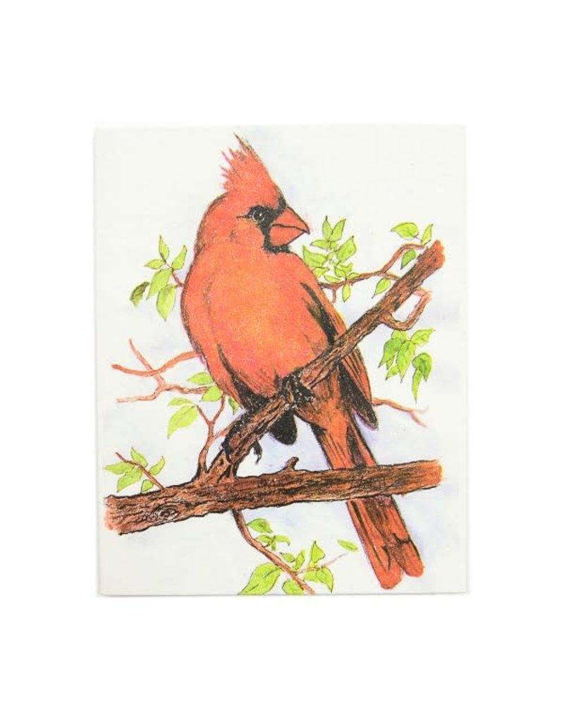 Mr. Ellie Pooh Cardinal Greeting Card