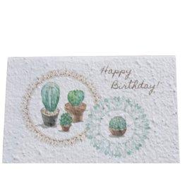Koru Street Birthday Cactus Seed Card