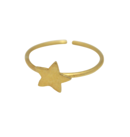 Asha Handicrafts Gold Tone Star Ring