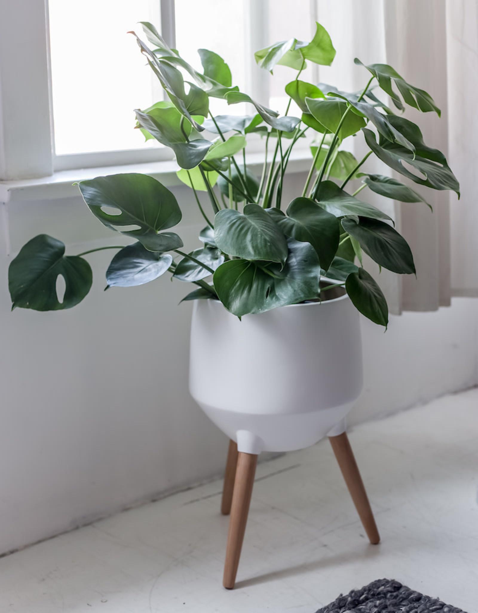 Style In Form Planter SIF Circa Base White AGW-004