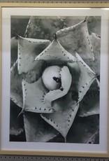 Art Framed Floral Sand Frame