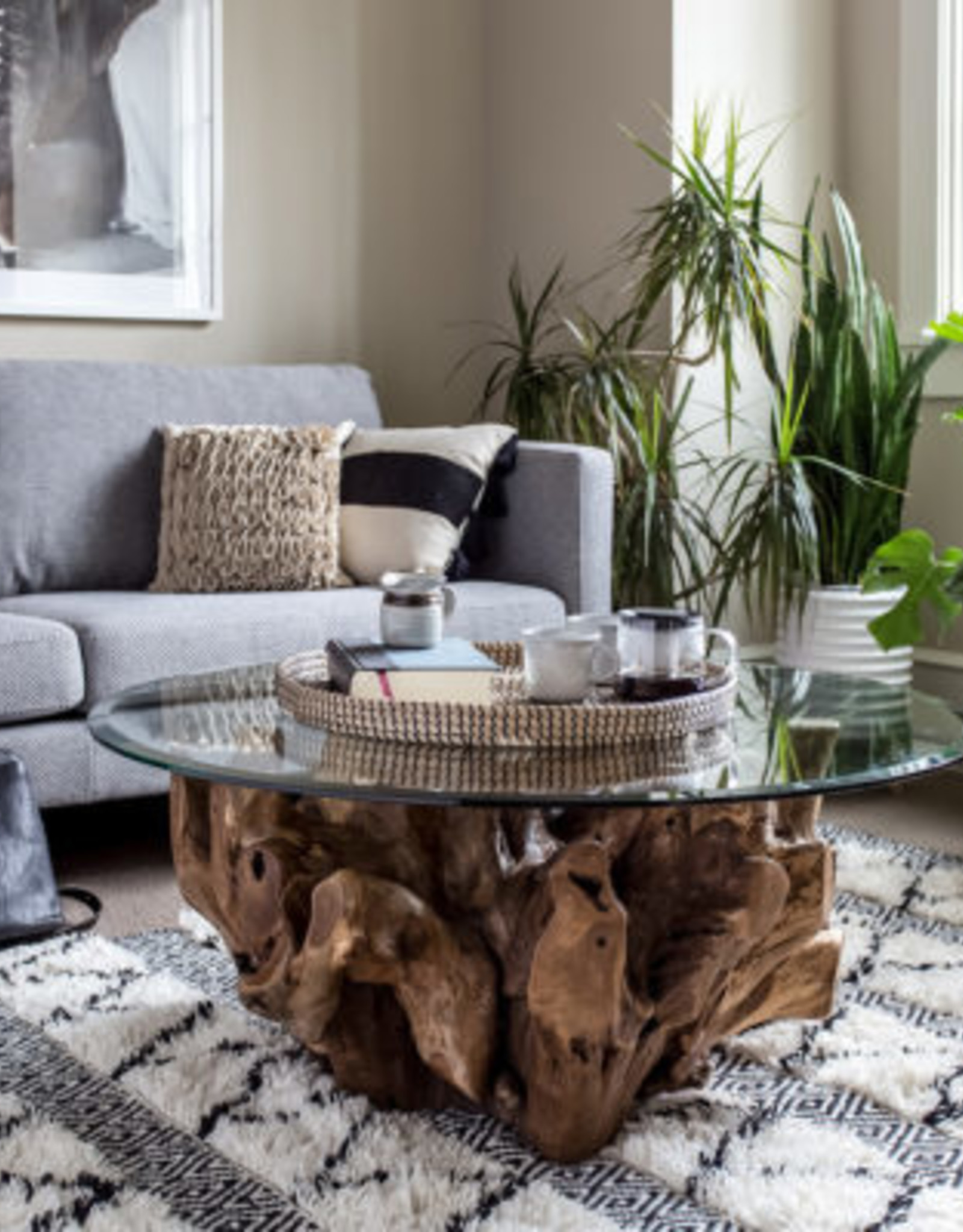 """Style In Form Coffee Table SIF Natura Root ( add glass ) 42"""" or 48"""""""