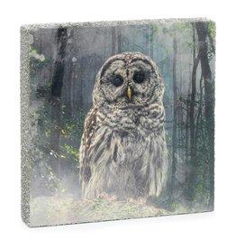 Cedar Mountain Cedar Mountain Art Block Forest Owl