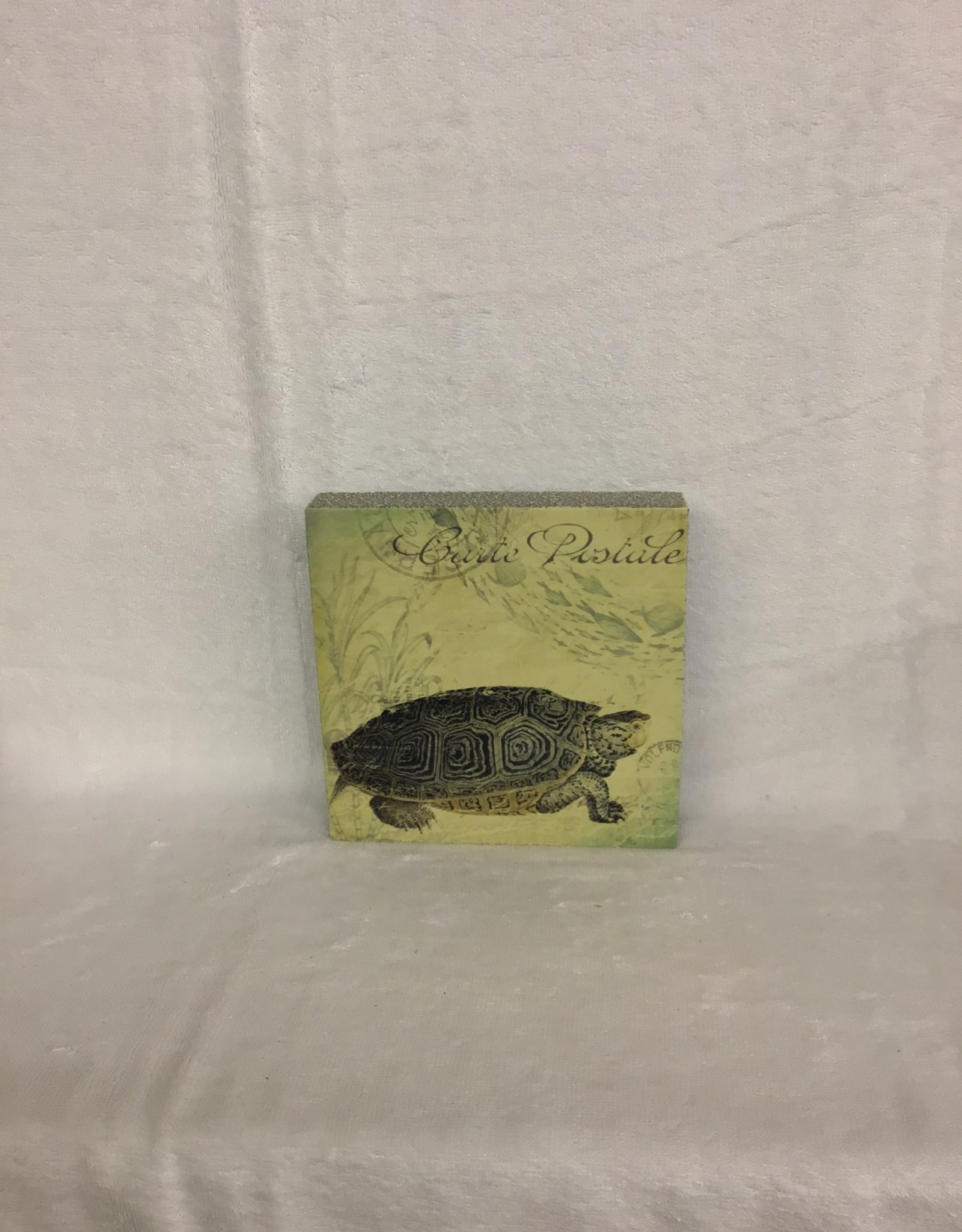 Cedar Mountain Cedar Mountain Art Block Turtle