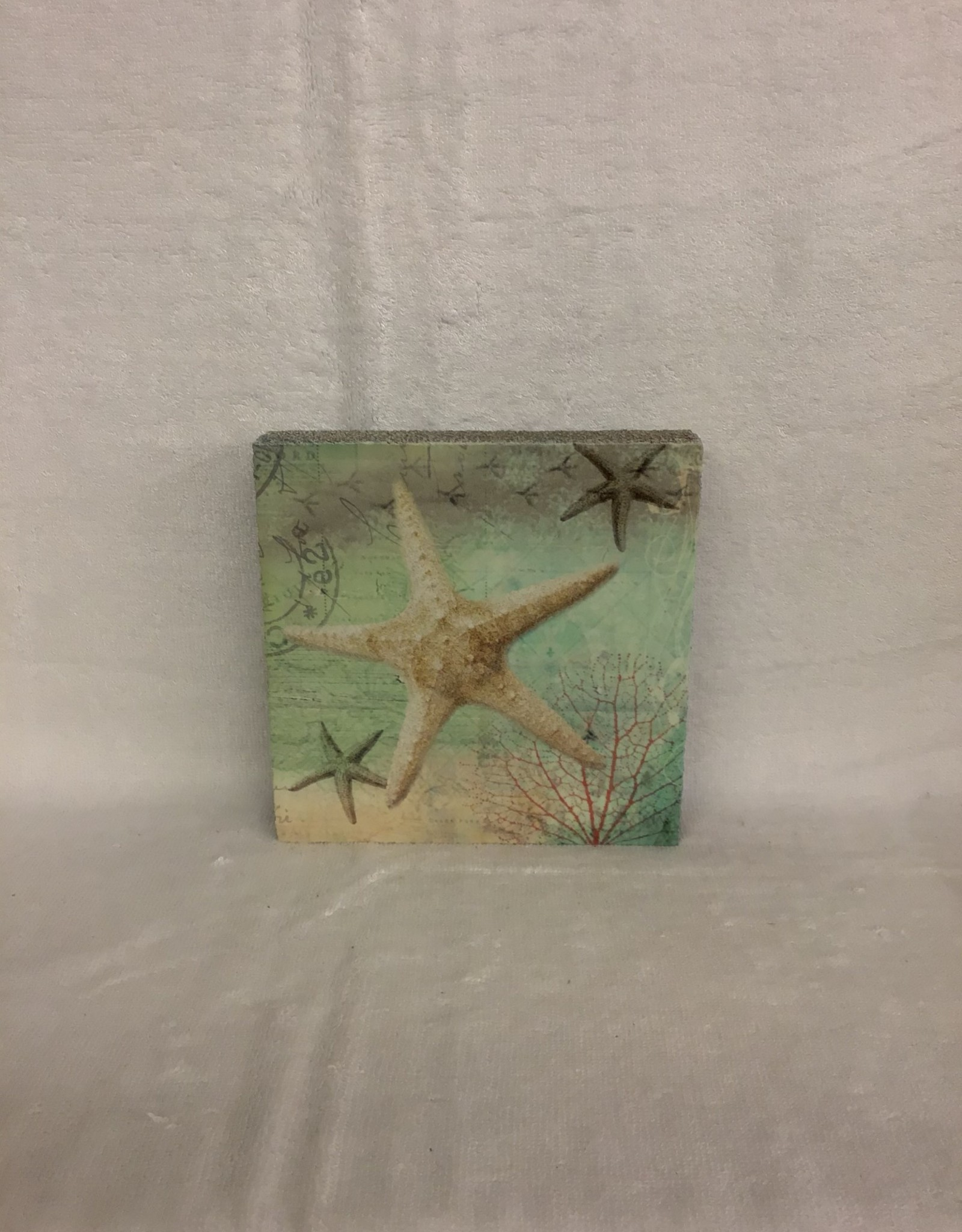 Cedar Mountain Cedar Mountain Art Block Starfish