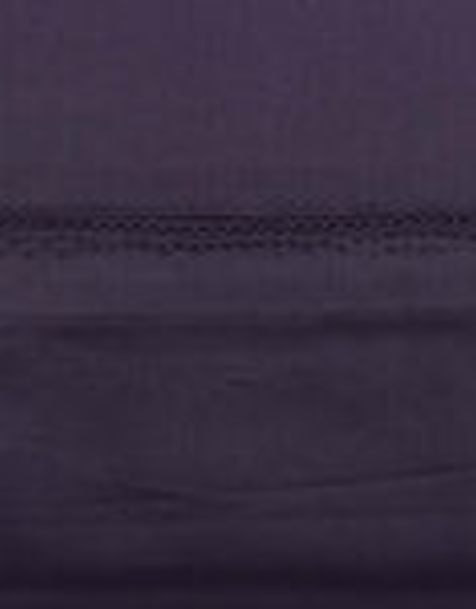 Daniadown Pillow Cases Daniadown Egyptian 400 Standard / Queen ( Pair )