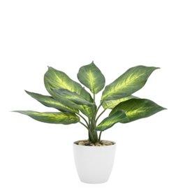 """Plant Potted 11"""" Plant Villa Faux"""