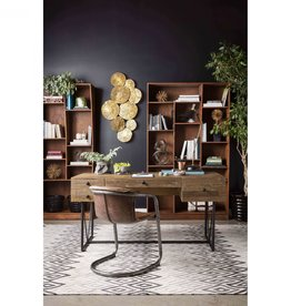 Moes Home Collection Moes Orchard Desk FR-1001-24