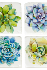 Coasters Ganz Succulent  S/4