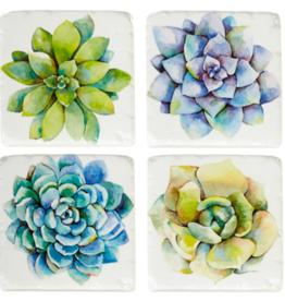 Coasters Ganz Succulent  S/4 161752