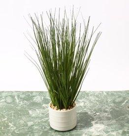 """Plant CJ Tall Grass In Ceramic Pot 12"""""""