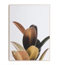 Painting CJ Plant W/Frame