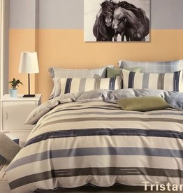 Duvet Set Contempo Tristan Twin w/ Shams