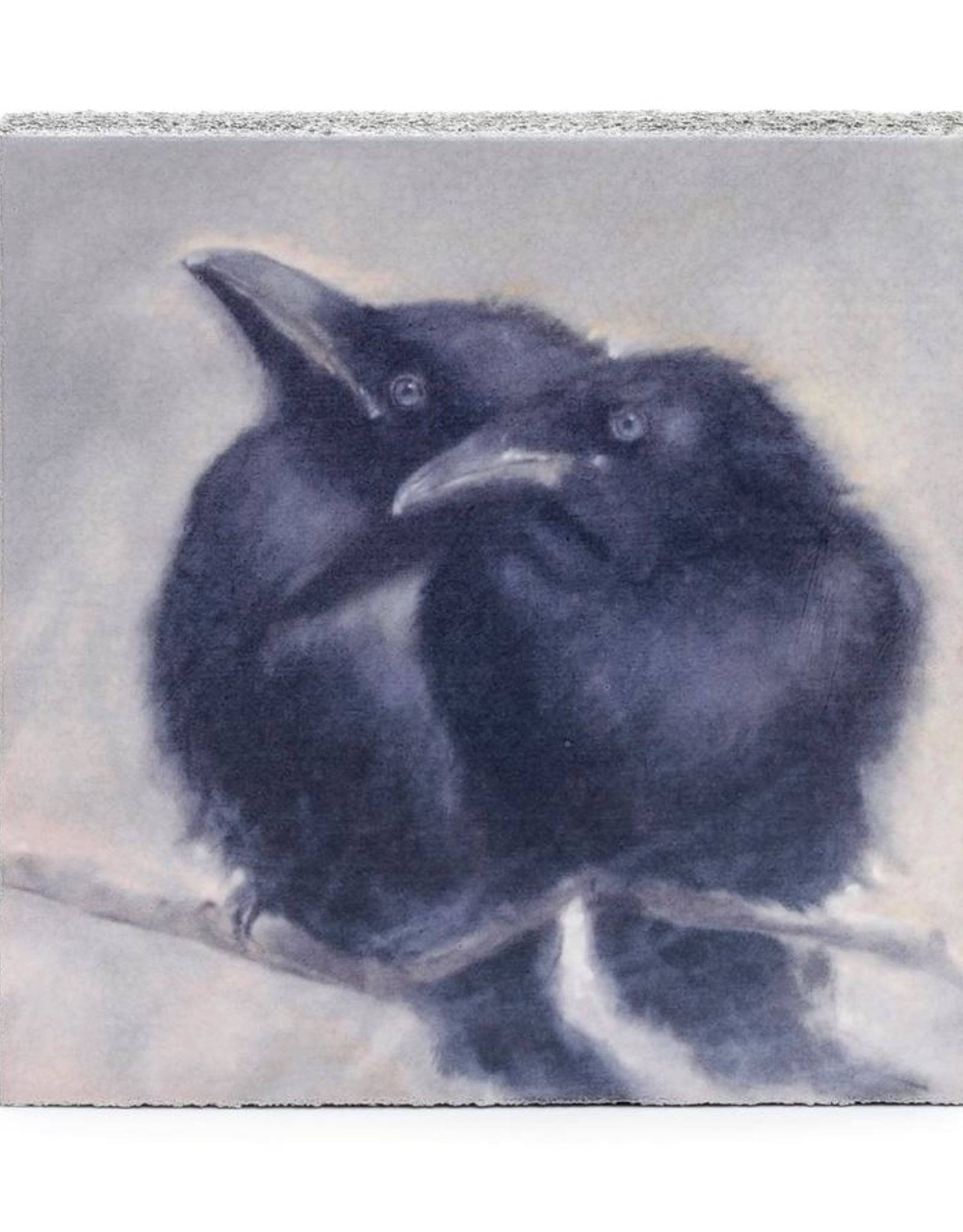 Cedar Mountain Cedar Mountain Art Block 2 Ravens Branch