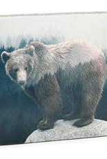 Cedar Mountain Cedar Mountain Art Block Forrest Bear