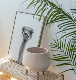 Style In Form Planter SIF Circa Pot Pink AGW-015