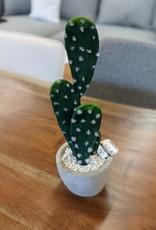 Nostalgia Cactus Nostalgia Taupe Clay pot Prickly