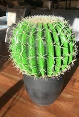 Cactus Danson