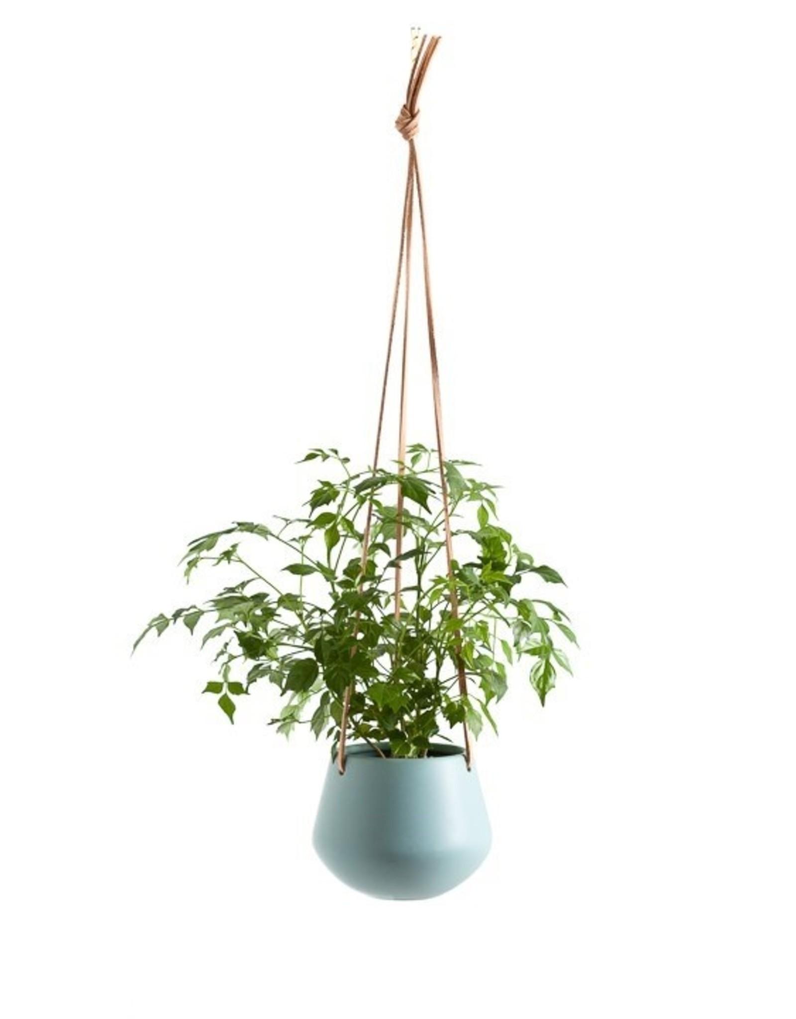 "Planter Torre & Tagus Hanging Ceramic Ashbury Teal 5"" 902921A"