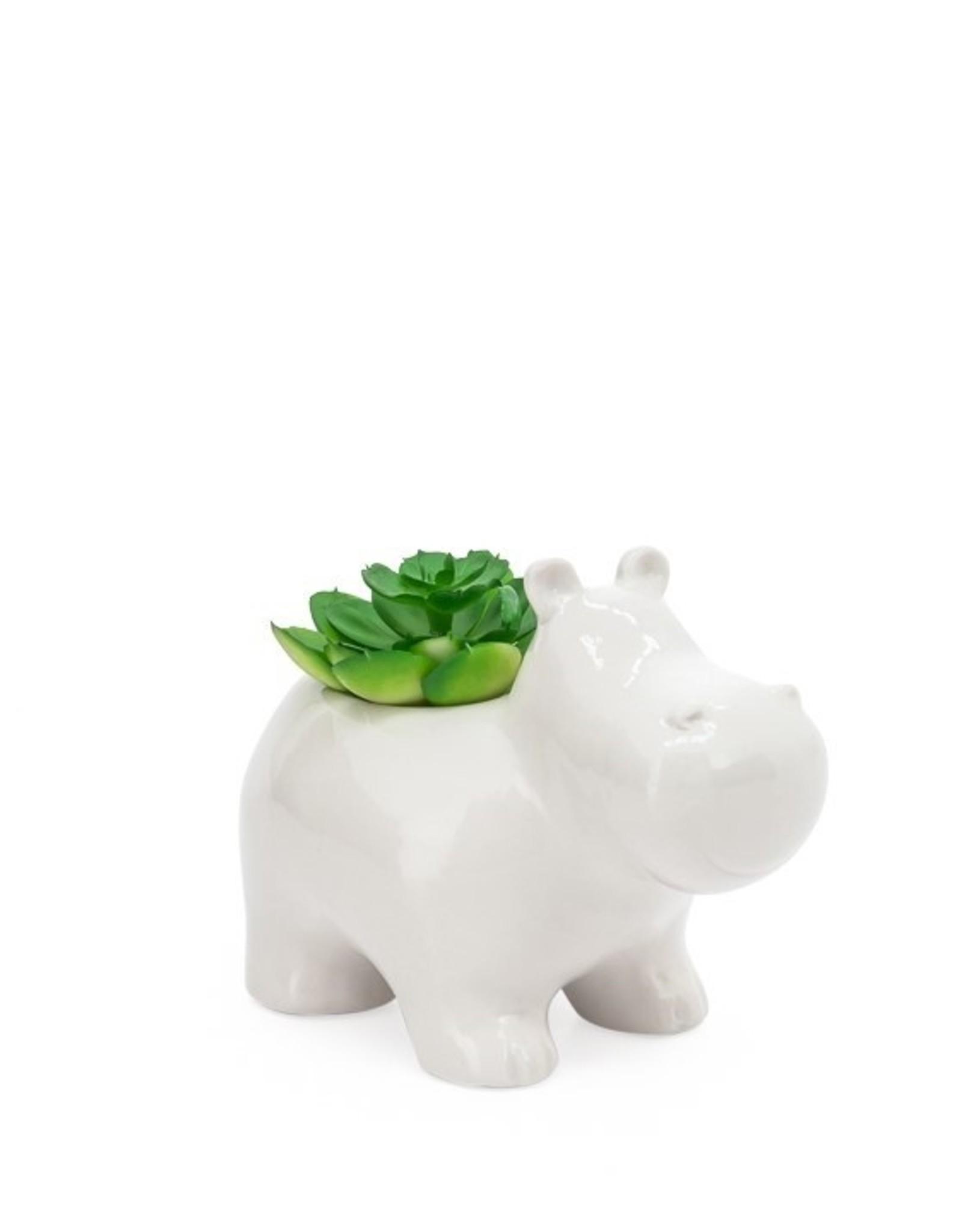 Planter Torre & Tagus Hippo White w/ Plant