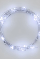 Light Strings Frans Koppers