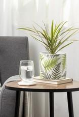 Planter Torre & Tagus Gazebo Fern LG 6.25 903948B