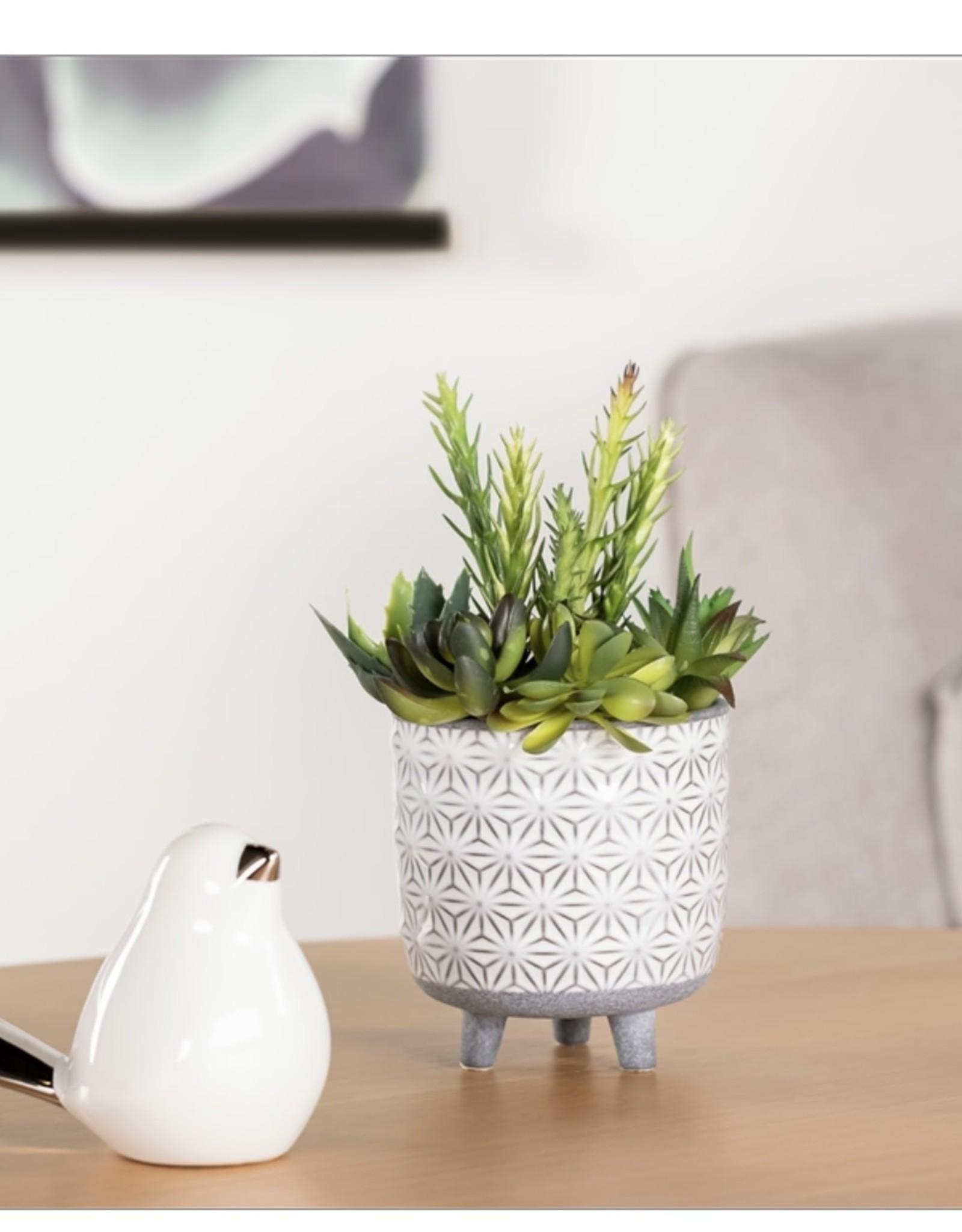 "Planter Torre & Tagus Star White 5.5"""