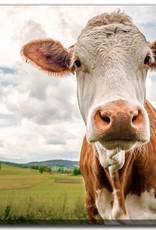 Streamline Art Funny Cow 30 x 45