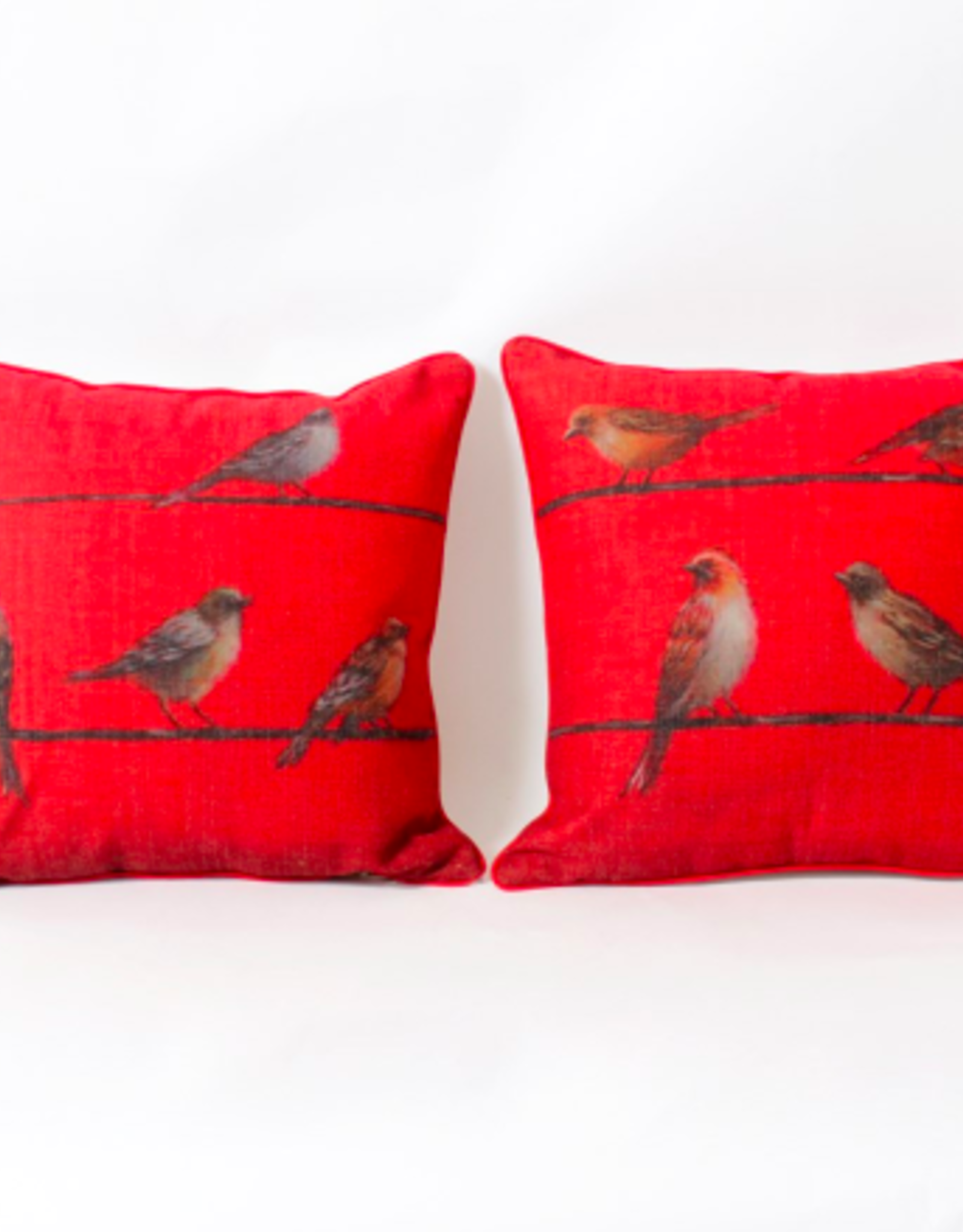 Cushions CJ Birds in Red Wall