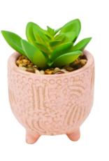 Nostalgia Plant Nostalgia Pink Pot 800-031