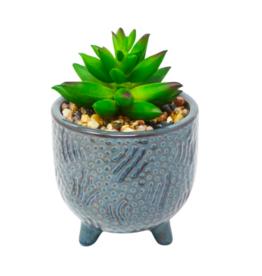 Nostalgia Plant Nostalgia Blue Pot 800-030