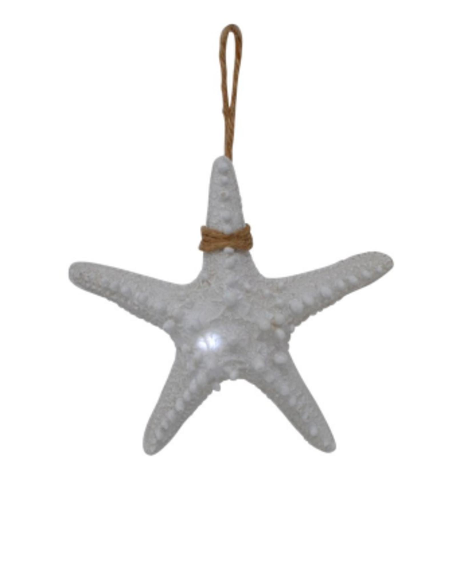 Nostalgia Starfish Nostalgia Lightening White 15 x 15 x 4