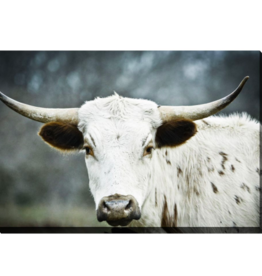 Streamline Art Texas Longhorn 30 x 45