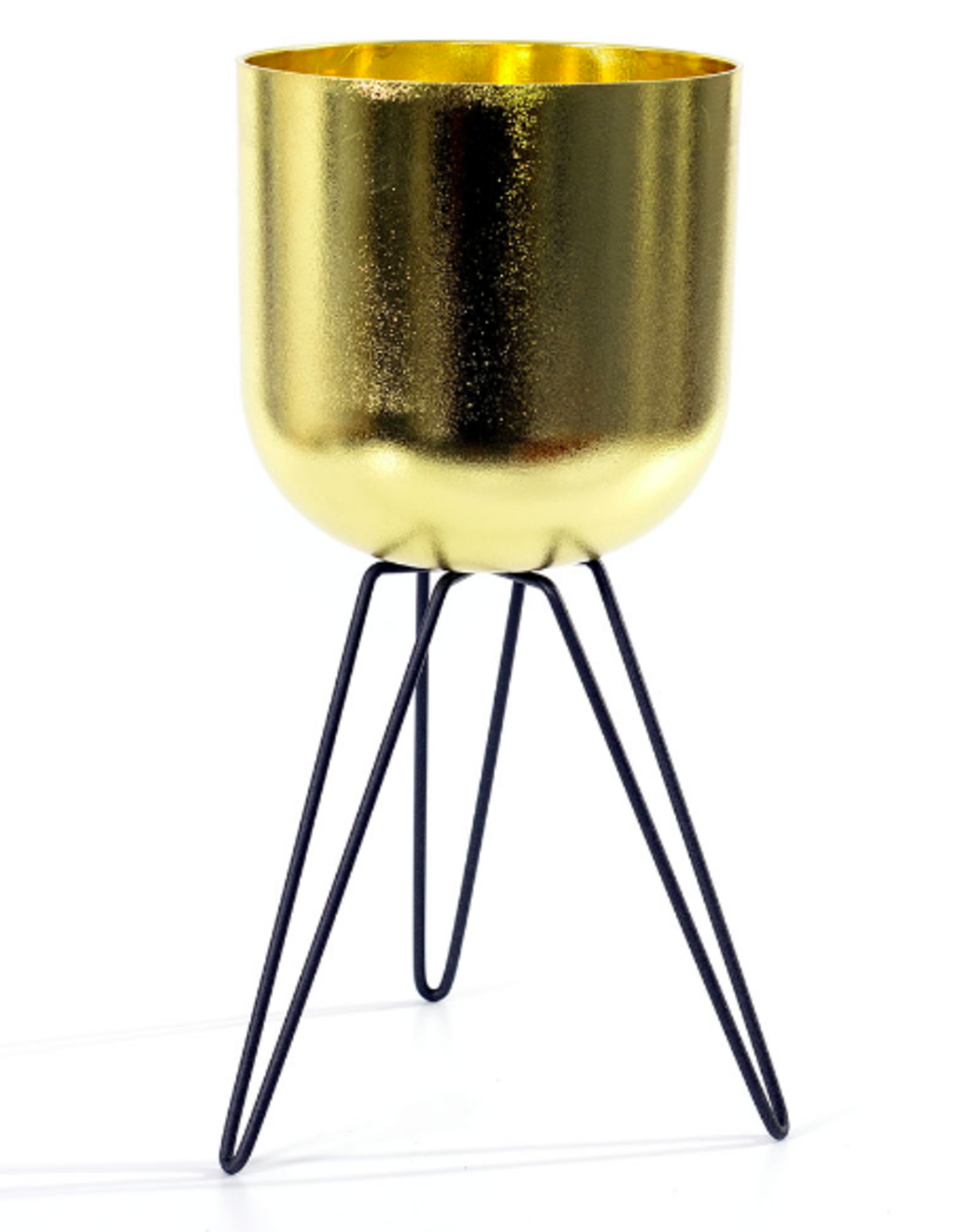Cathay Planter Cathay Gold Black Legs