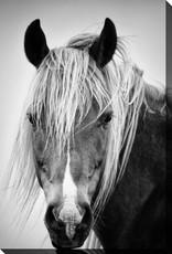 Streamline Art Portrait In Black And White