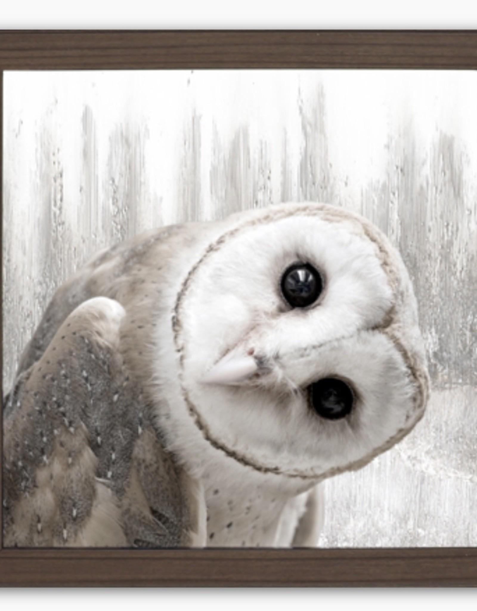Art Northwood Owl N3332 14x14