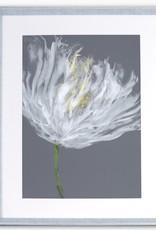 Art Northwood Framed White Flower TOP47 28x36