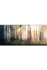 Streamline Art Constancy 20 x 60