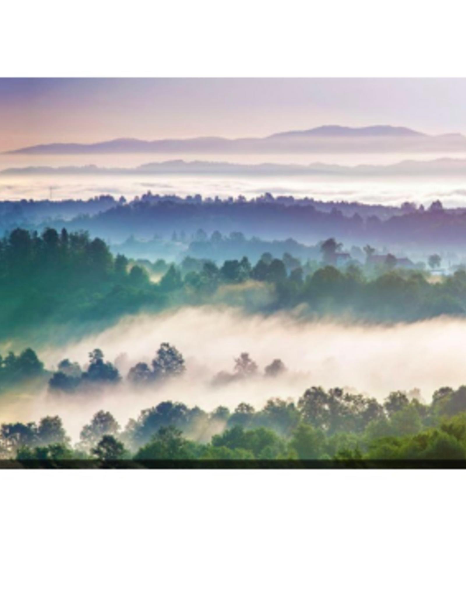 Streamline Art Panorama Landscape 20 x 40