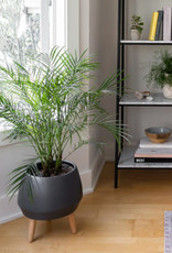 Style In Form Planter SIF Circa Pot Charcoal AGW-019