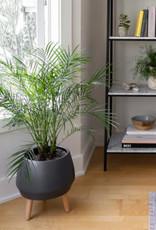 Style In Form Planter SIF Circa Pot Matte Charcoal AGW-019