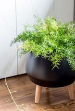 Style In Form Planter SIF Circa Pot Matte Black AGW-006