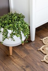 Style In Form Planter SIF Circa Pot Matte White AGW-002