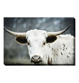 Streamline Art Texas Longhorn 38 x 60